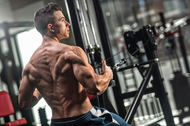 Your Trusted Guide On Steroid Use